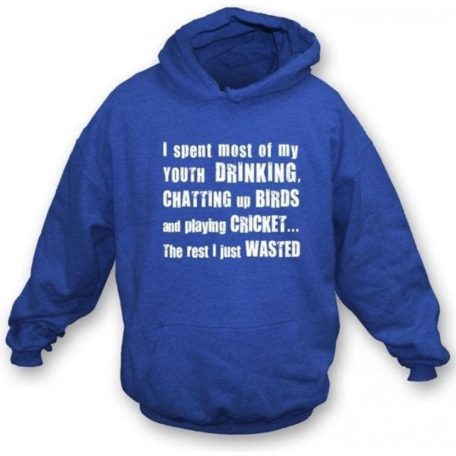 I Spent Most of my Youth Drinking Hooded Sweatshirt