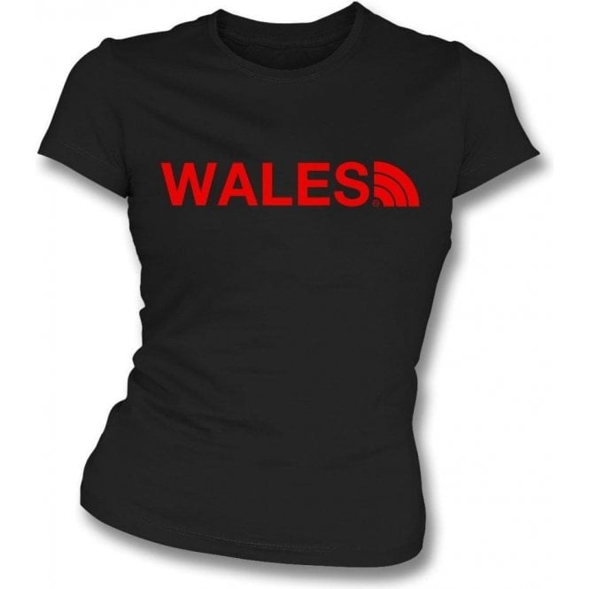 Wales Region Womens Slim Fit T-Shirt